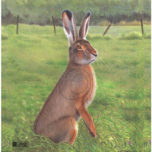 JVD - Rabbit