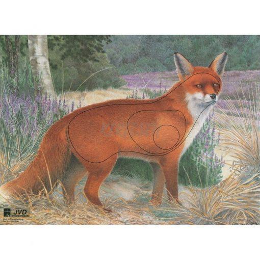 JVD - Fox